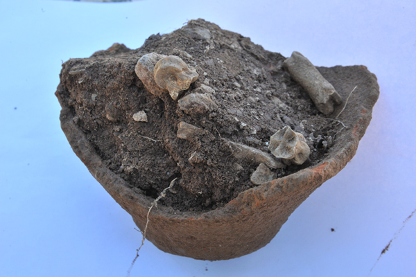 Zominthos Excavation, Week 5