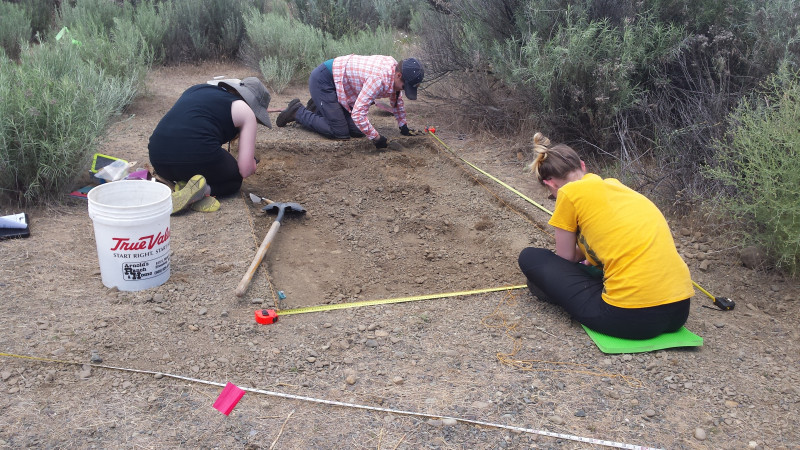 Central Washington University Forensic Anthropology Field School Archaeological Fieldwork Opportunities Bulletin Afob