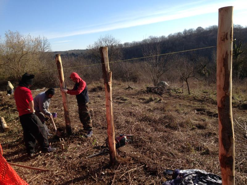 Volunteers work hard at building a new fence to protect the site.