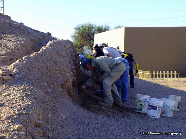AIA-Central Arizona members and Pueblo Grande Museum Mudslingers hard at work.