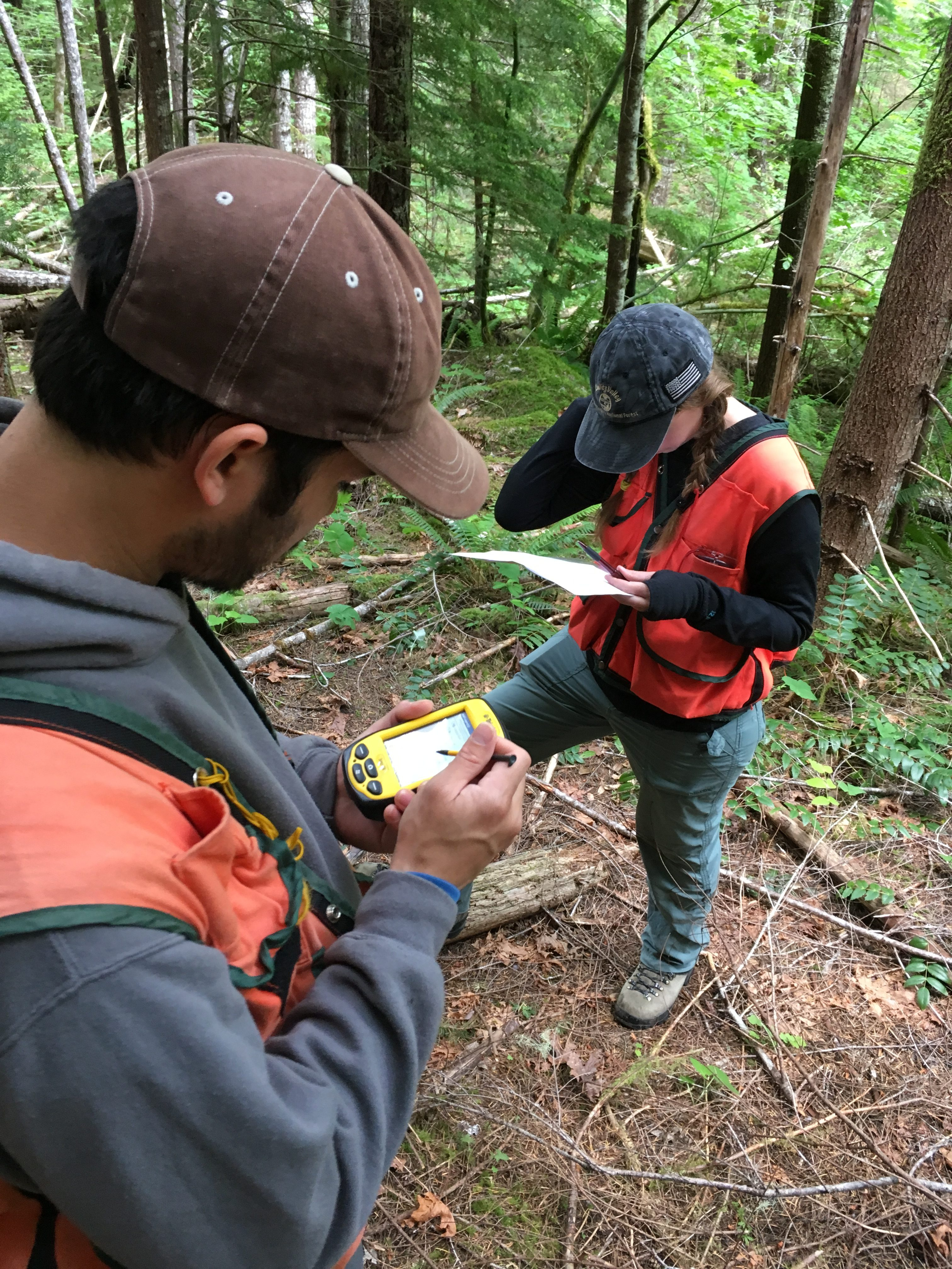 Archaeologists surveying the trail. Courtesy of the Pacific Northwest Archaeological Society.